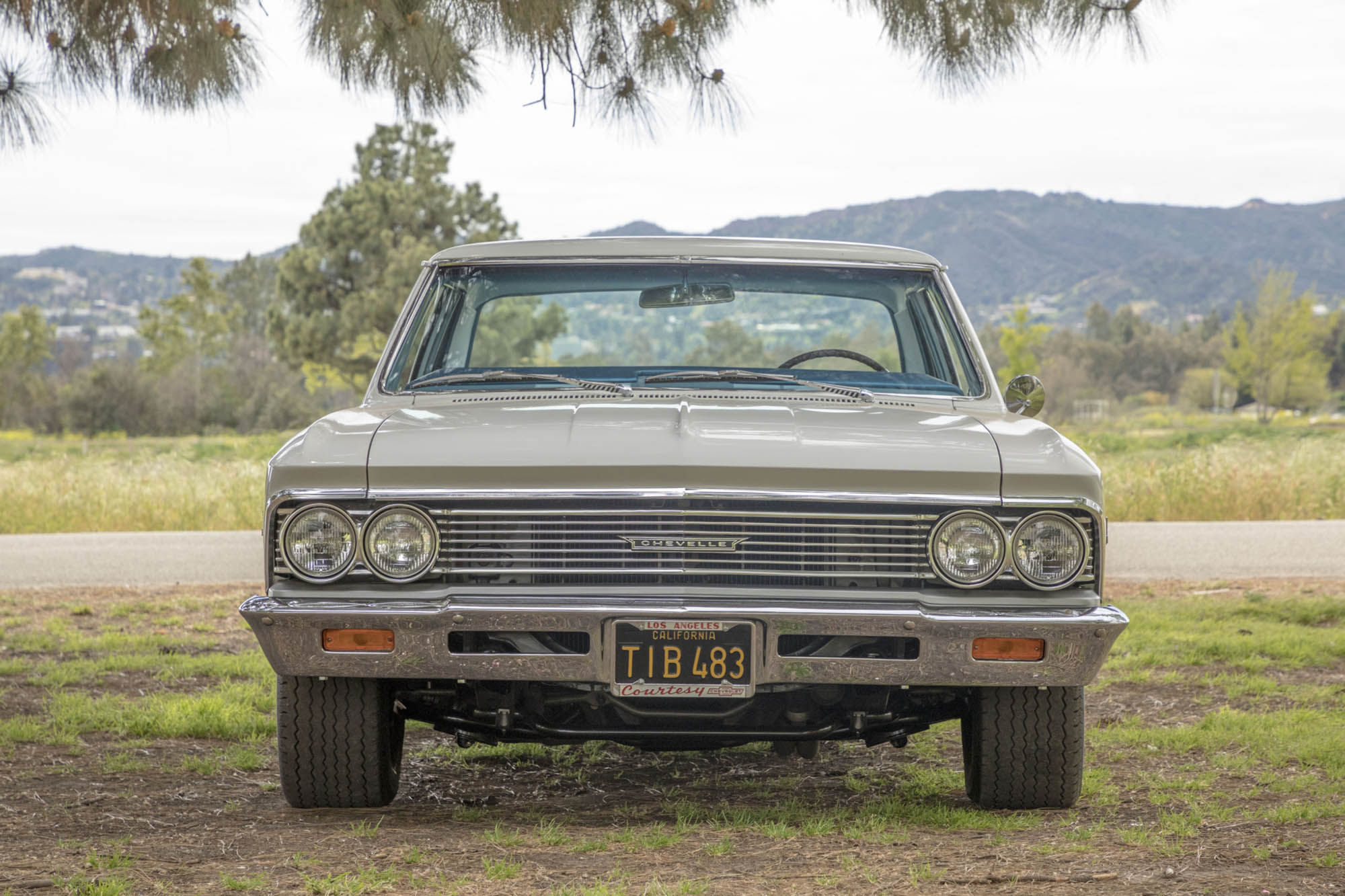 For Sale: 1966 Chevelle with a 489 ci Big-Block Chevy V8 – Engine